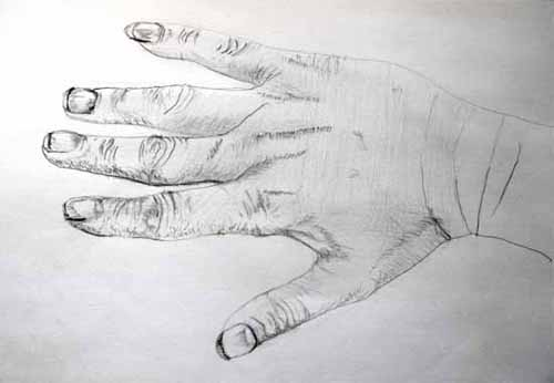 Image of a hand with more detail using hatching methods of mark making mostly.
