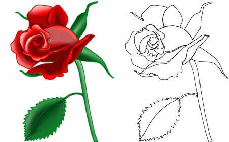 How To Draw A Rose Red And Black Outline How to draw a rose easy and simple.